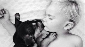 Η ιστορία αγάπης ενος μωρου... και ενός σκύλου!