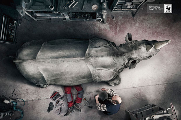 Ποια θα ήταν η κραυγή των ζώων για βοήθεια αν μπορούσαν να μιλήσουν