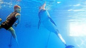 Το παιδί και το δελφίνι  .. Η ιστορία συγκινεί και οι εικόνες συγκλονίζουν (ΦΩΤΟΓΡΑΦΙΕΣ- ΒΙΝΤΕΟ)