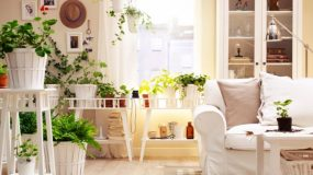 Φενγκ Σούι: 5 τρόποι για να φέρεις τύχη στο σπίτι σου!