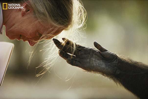 National Geographic: Φωτογραφίες επετειακού τεύχους (2)