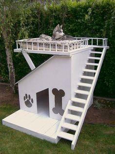 Σπιτάκια σκύλων που θα σας πάρουν το μυαλό και μια κατασκευή βήμα βήμα!