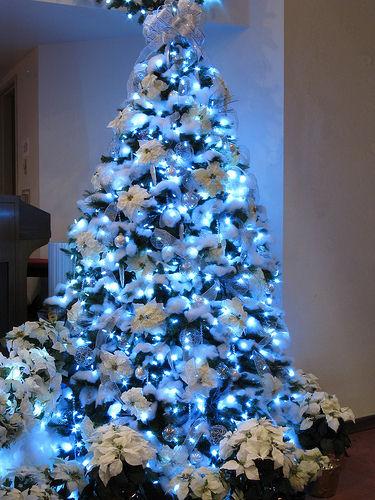 Οδηγός στολισμού Χριστουγεννιατικου δέντρου!Και μερικα από τα ωραιότερα δεντρα να πάρεις ιδεες