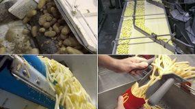 Δείτε στο video τι περιέχουν οι διάσημες πατάτες των McDonald's.Δε νομίζω να ξαναφατε!