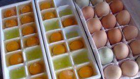 Ρίχνει αυγά μέσα σε μια παγοθηκη. Γιατι;To πιο έξυπνο tip που είδατε ποτε