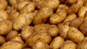 Δείτε πως να ξεφλουδίσετε μια σακούλα πατάτες σε λιγότερο από ένα λεπτό! Δεν θα πιστεύετε στα μάτια σας! ΒΙΝΤΕΟ