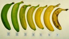 Από τις μπανάνες που βλέπετε,ξέρετε ποια είναι η πιο υγιεινή επιλογή;Μάθετε ποια πρέπει να αγοράζετε και γιατί
