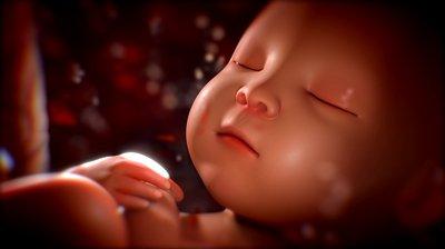 Το video που έκανε όλες τις μαμάδες να κλάψουν από συγκίνηση!9 μήνες στη κοιλίτσα της μαμάς!