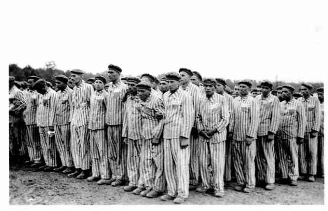 Buchenwald_WEB
