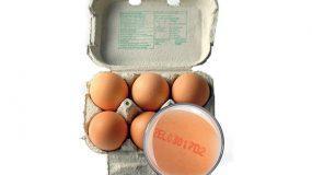 Έχετε προσέξει ποτέ τους κωδικούς στα αυγά που αγοράζετε; Δείτε ΤΙ σημαίνουν!