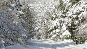 Κακοκαιρία: Αυτές είναι οι 25 πόλεις της Ελλάδας που θα δουν χιόνι