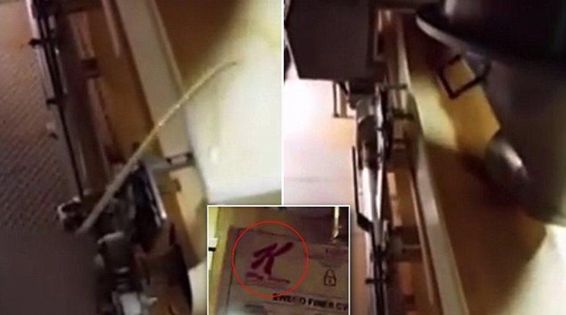 Σάλος με βίντεο που δείχνει υπάλληλο να ουρεί σε δημητριακά γνωστής εταιρείας