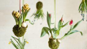 Υπέροχες ιδέες για να φτιάξετε έναν εσωτερικό κήπο