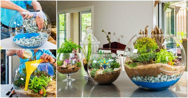 Ιδέες για  να φτιάξετε διακοσμητικους γυάλινους κήπους
