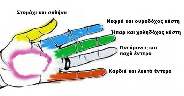 Γνωρίζετε ότι Κάθε δάχτυλο συνδέεται με ένα  όργανο του Σώματος; Πιέστε ΑΥΤΑ τα σημεία και θα Εκπλαγείτε !