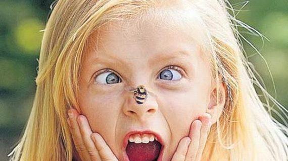 Τσίμπησε το παιδί σας μέλισσα; Δείτε τι πρέπει να κάνετε