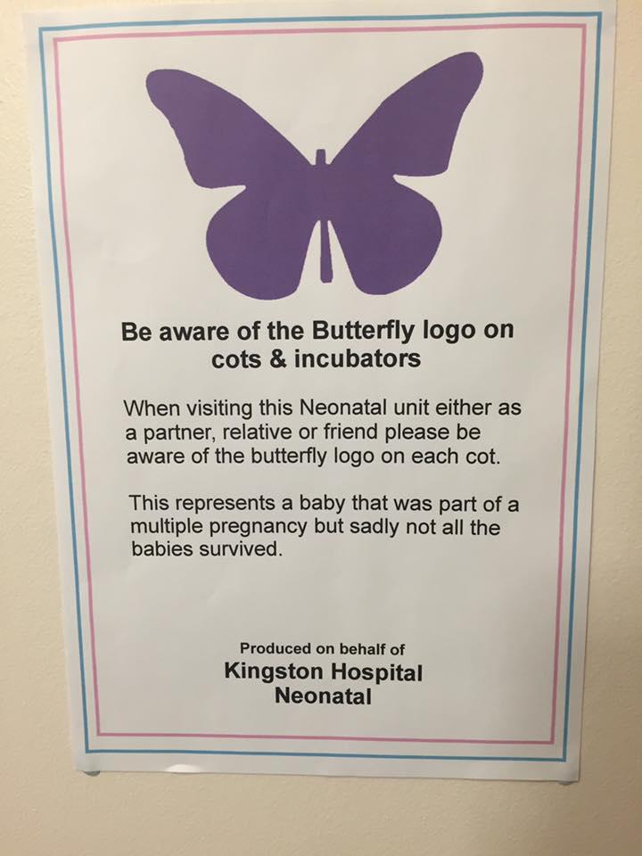 Δείτε τι σημαίνει αν δείτε μια μωβ πεταλούδα σε κάποιο μαιευτήριο