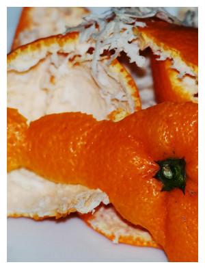 πορτοκάλι