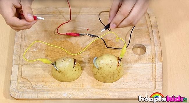 Πατάτες- Μπαταρίες: ένα απίστευτο πείραμα για να κάνετε με τα παιδιά σας