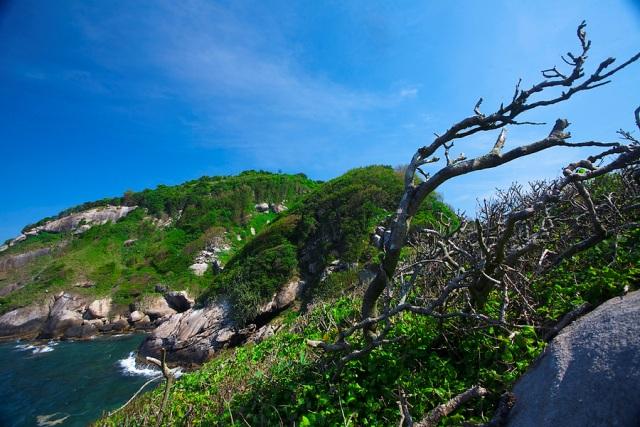 Το νησί των φιδιών Απαγορευμένο για τους ανθρώπους