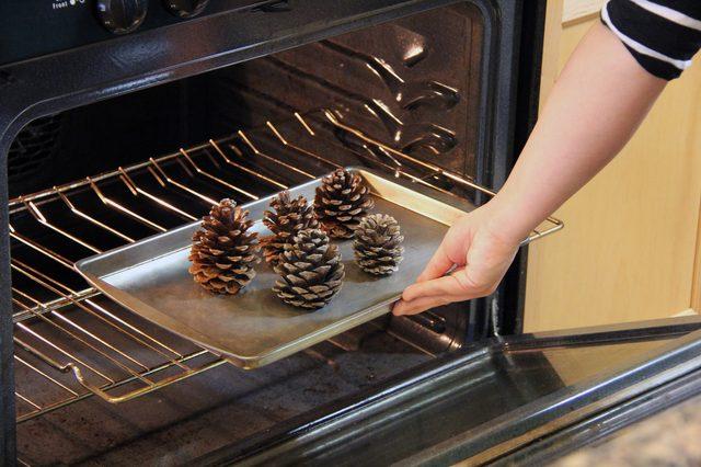 βάλτε τα κουκουνάρια σε ένα ταψί και στο φούρνο