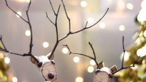 Φτιάξτε τον πιο όμορφο χριστουγεννιάτικο τάρανδο !