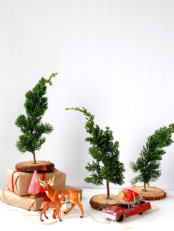 Μικρά χριστουγεννιάτικα δέντρα που κάνουν την διαφορά