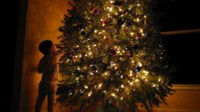 Χριστουγεννιάτικο δέντρο: Ποιά η ιστορία του; Πότε εισήλθε στη χριστιανική θρησκεία;