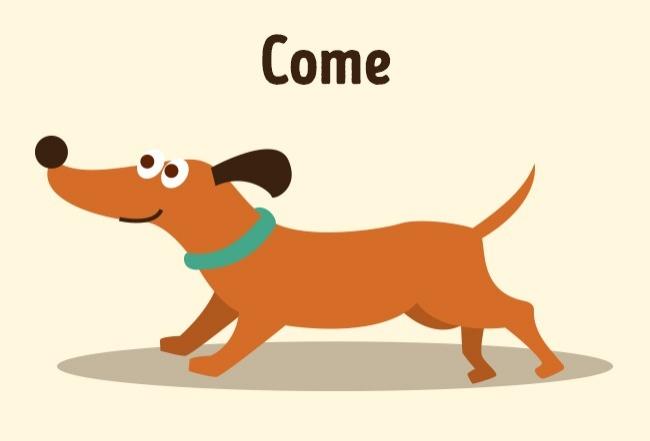 Εκπαιδεύστε το σκύλο σας σαν επαγγελματίες