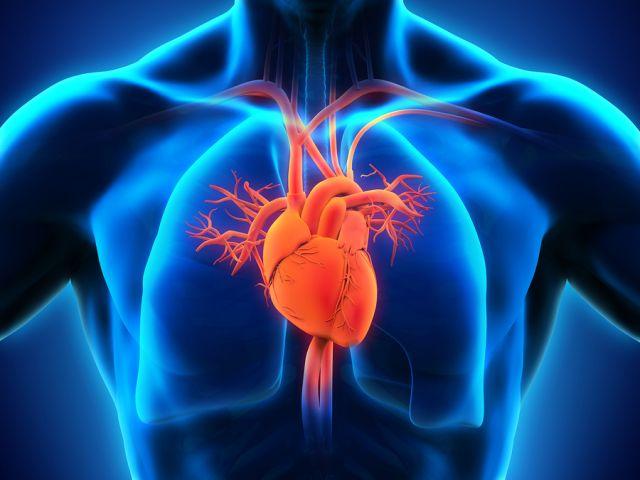 Ποια είναι η πρόληψη και η εναλλακτική αντιμετώπιση για τα καρδιαγγειακά νοσήματα;
