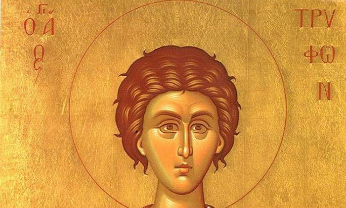 1/2: Σήμερα γιορτάζει ο Άγιος Τρύφων… Ο προστάτης άγιος των γεωργών και αμπελουργών