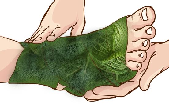 Παίρνει φύλλα από λάχανο και τυλίγει τα πόδια της.. Μόλις δείτε γιατί θα εκπλαγείτε!