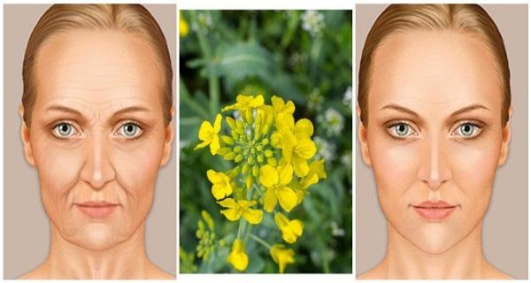 Το διάσημο ρωσικό ελιξίριο ομορφιάς που θα σας κάνει να δείχνετε πολύ νεότερη