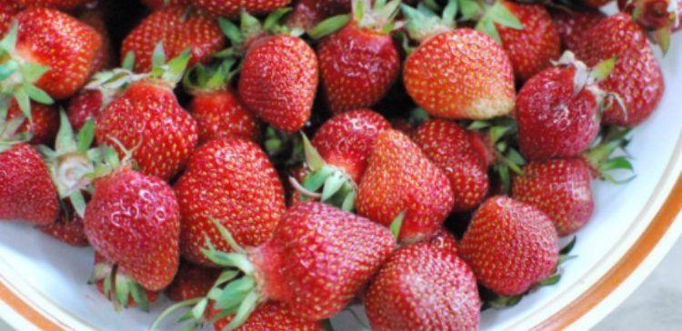 Γιατί δεν πρέπει να πετάτε τα κοτσάνια από τις φράουλες;