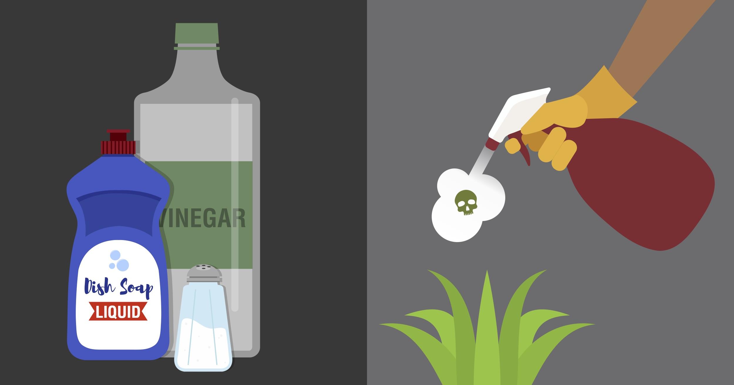 Με αυτές τις 7 φυσικές σπιτικές συνταγές θα απαλλαγείτε από τα ζιζάνια στο κήπο σας μια για πάντα!