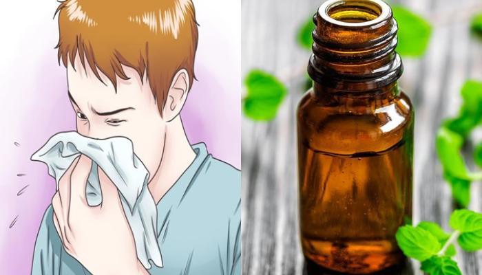 Ριγανέλαιο: Το φυσικό αντισταμινικό για την αντιμετώπιση αλλεργιών