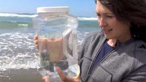 Έβαλε νερό της θάλασσας σε μια κατσαρόλα και άρχισε να το βράζει. Το αποτέλεσμα; Δεν πάει το μυαλό σας!