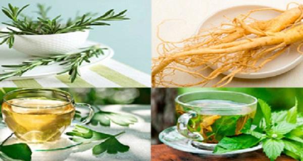 Τα 4 φυτά που προστατεύουν τον εγκέφαλο από το Αλτσχάιμερ, το άγχος, τη κατάθλιψη και πολλά άλλα!