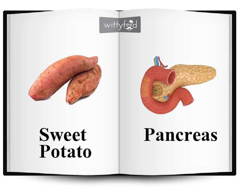 Έχετε αναρωτηθεί ποτέ γιατί αυτά τα superfoods μοιάζουν τόσο πολύ με όργανα του σώματος;