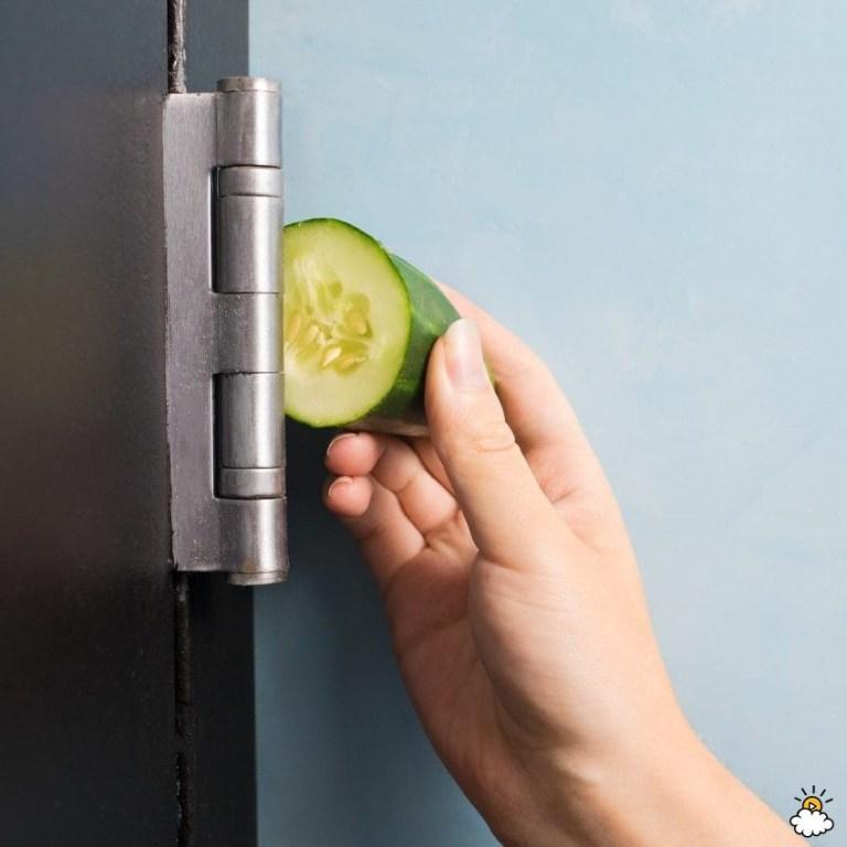 9 Έξυπνοι Τρόποι Για Να Χρησιμοποιήσετε Το Αγγούρι Στο Σπίτι!