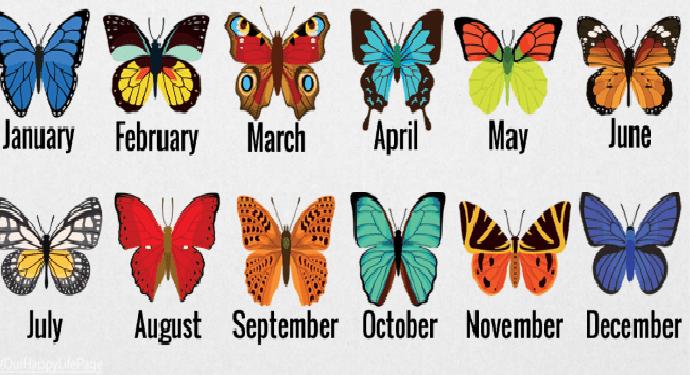 Διαλέξτε μια πεταλούδα ανάλογα το μήνα που γεννηθήκατε και δείτε τι έχει να πει για εσάς..