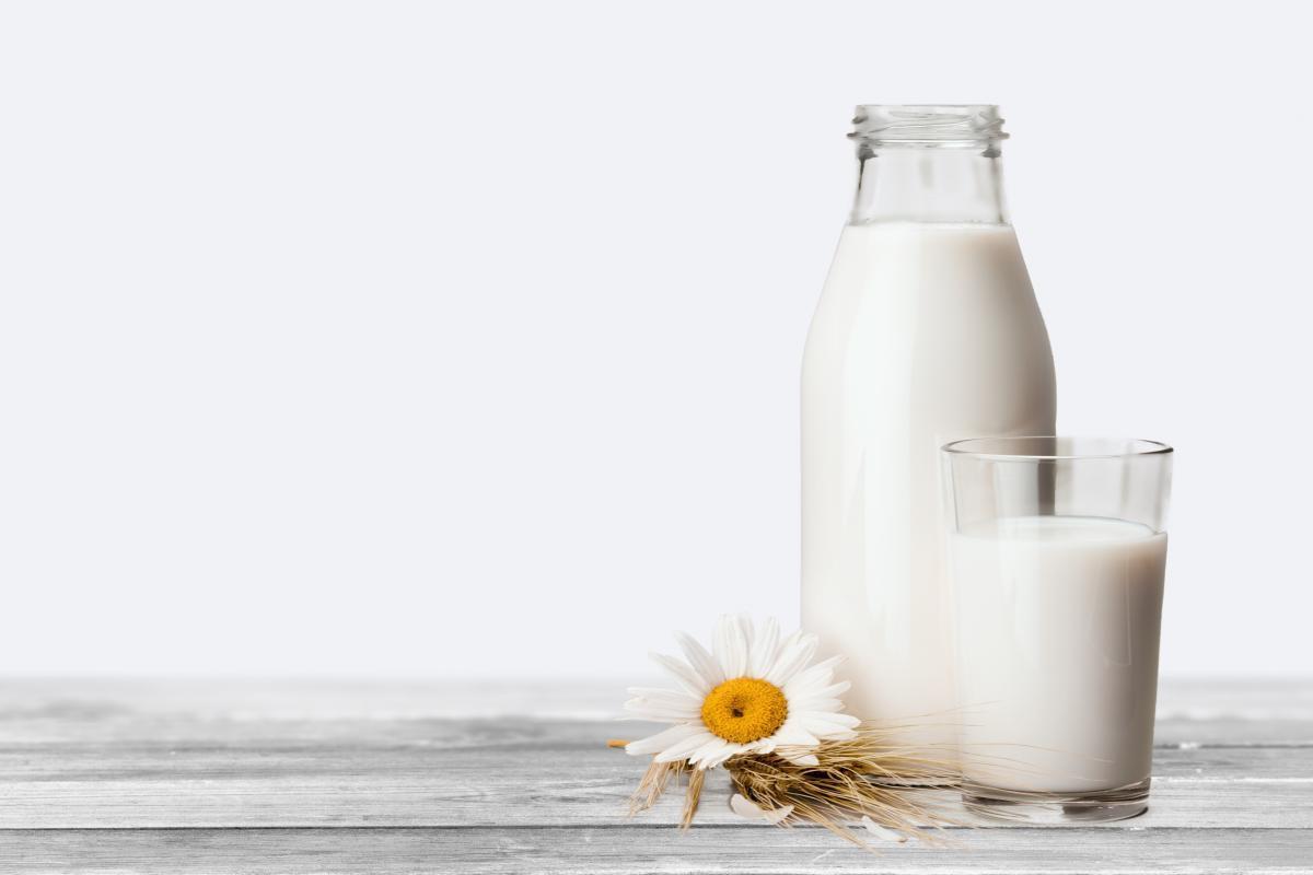 Σύμφωνα με Ινδούς επιστήμονες το γάλα κατσαρίδας είναι η υπερτροφή του μέλλοντος