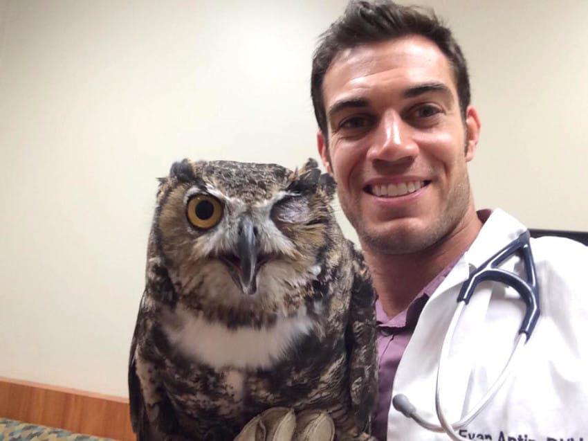 Αυτός ο κτηνίατρος είναι τόσο κούκλος που θα σας κάνει να πάτε τα ζωάκια σας κατευθείαν για εξέταση
