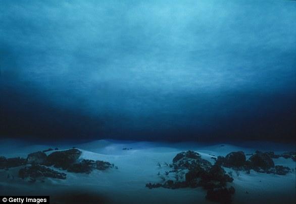 Οι επιστήμονες προειδοποιούν: Εξαφανίζονται Μαλδίβες και Σεϋχέλλες το 2030 από την αύξηση της στάθμης της θάλασσας