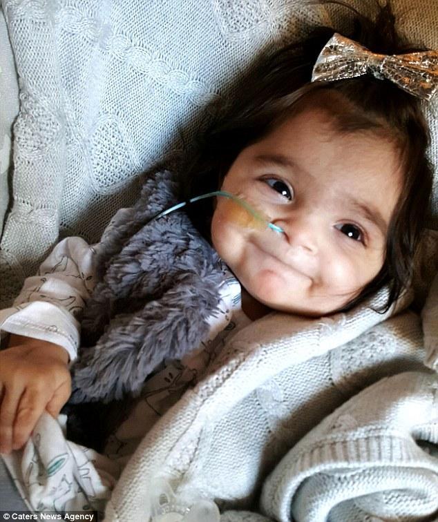 Αυτό το αξιολάτρευτο 8 μηνών κοpιτσάκι γεννήθηκε με τόσα πολλά μαλλιά που πολλοί νομίζουν ότι φοράει περούκα.