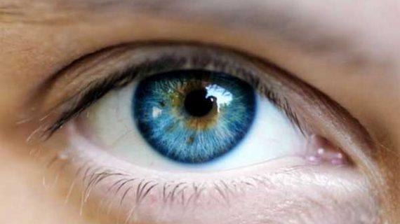 Θα πάθετε πλάκα:Όλοι οι άνθρωποι με μπλε μάτια έχουν τον ίδιο πρόγονο. Δείτε ποιον