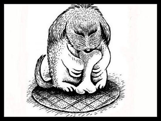 Σύμφωνα με έρευνες μόνο το 1% των ανθρώπων βρίσκει το ζώο στην εικόνα. Είστε ένας από αυτούς;