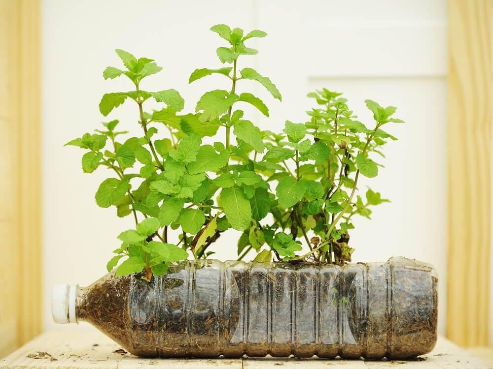 Πως να φτιάξετε φανταστικές γλάστρες χρησιμοποιώντας ανακυκλώσιμα υλικά;