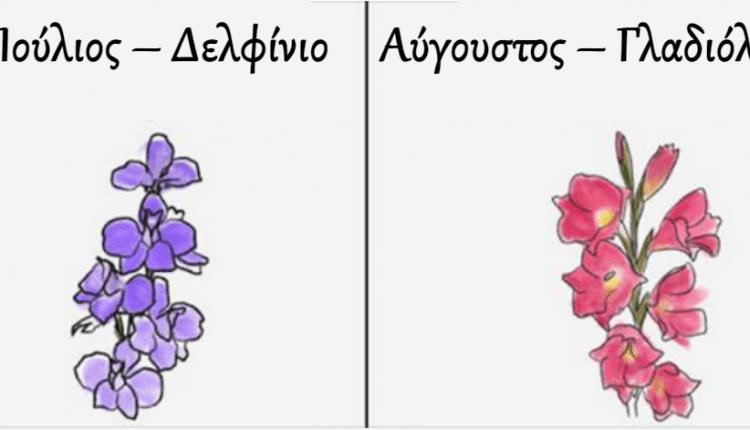 Ο μήνας που γεννηθήκατε συνδέεται με ένα λουλούδι. Βρείτε το δικό σας λουλούδι και δείτε τι σημαίνει για εσάς!