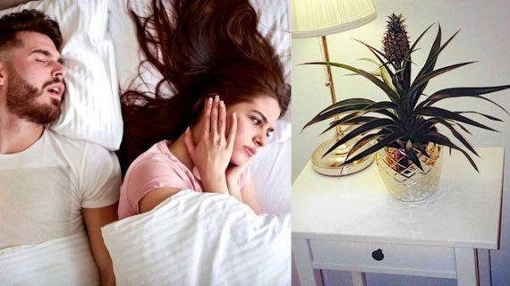 Κοιμάσαι δίπλα σε κάποιον που ροχαλίζει; Κάνει κακό στην υγεία σύμφωνα με νέα έρευνα!